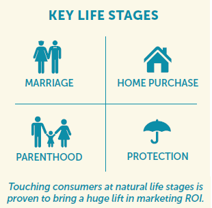 Life Stages-2.png
